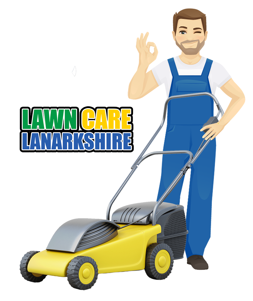 lawn care lanarkshire grass cutting